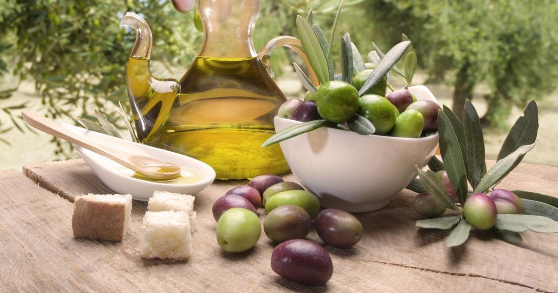 1600x840-Blog-Ulivo-e-olio-di-olive-1.jpg